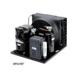 CAJN2446ZBR-FZ Tecumseh unidade condensadora hermética LBP R404A - R507 - R407B