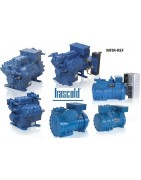 Frascold refrigeration compressors for the cold technique